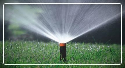 Irrigazione interrata: la scelta facile