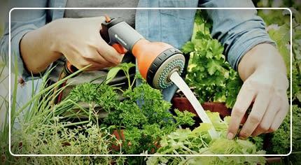 Pistole e lance per irrigazione: la scelta facile