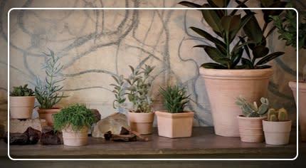 Vasi per piante: la scelta facile