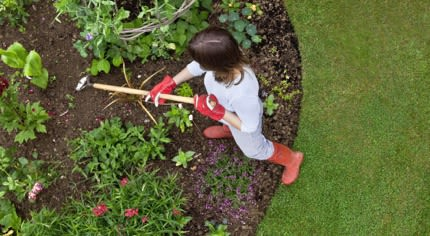 Rubrica: giardino