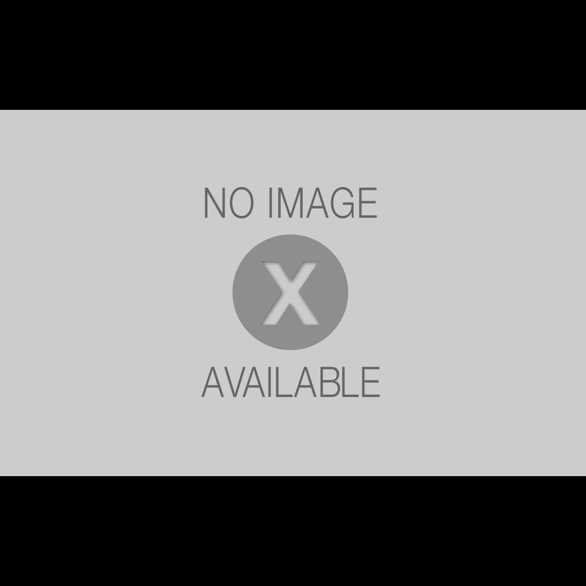 Siporex blocco in calcestruzzo cellulare 62 5 x 25 x 10 for Cordoli in cemento leroy merlin