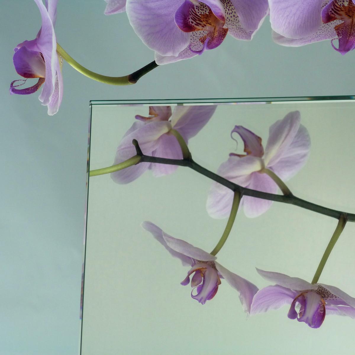 Vetro specchio su misura prezzi e offerte online leroy for Ante su misura leroy merlin