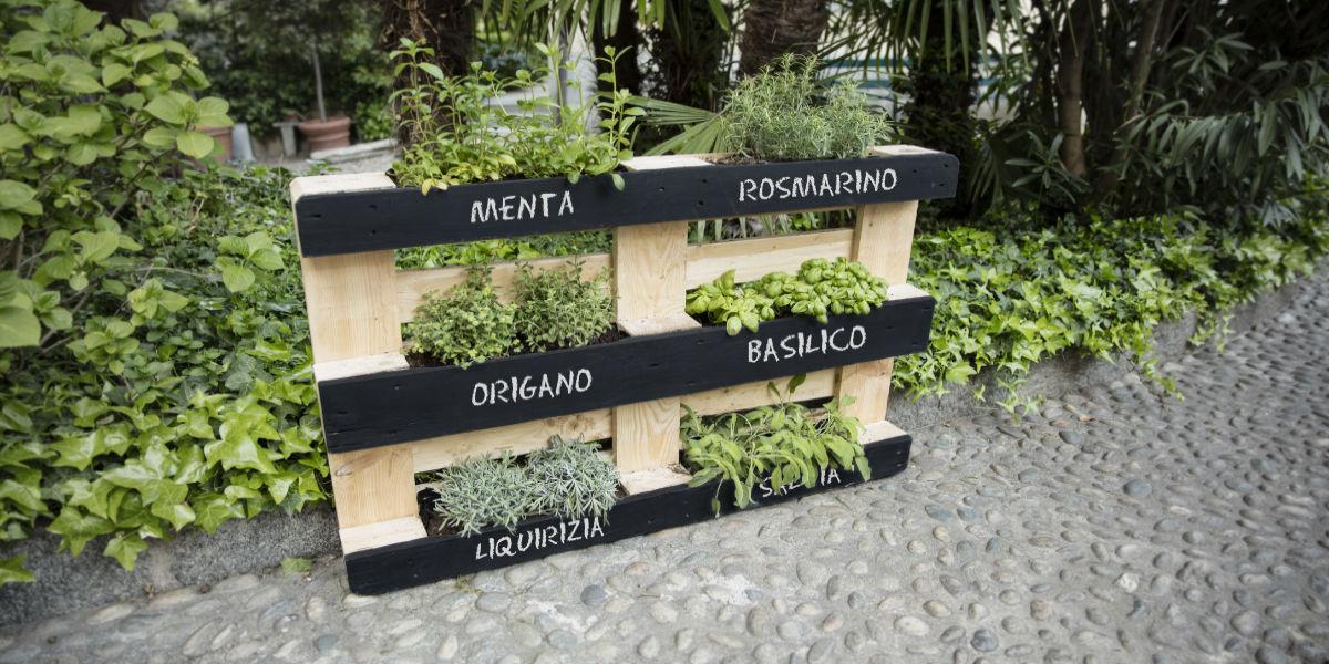 Come costruire un giardino verticale - Come realizzare un giardino verticale ...