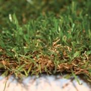 Colore dell'erba sintetica