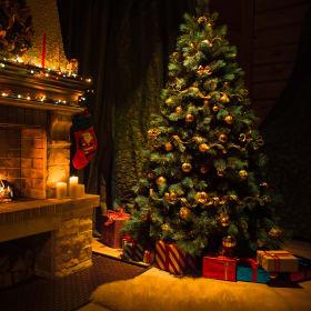 Albero di Natale: folto è più bello!