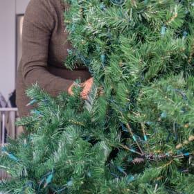 Il montaggio dell'albero di Natale