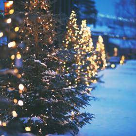 indice di protezione delle luci natalizie