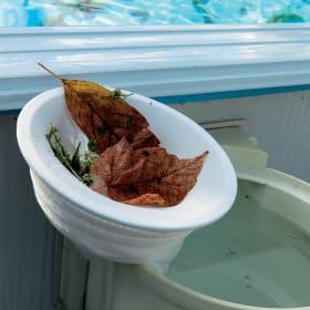 Trattamento fisico di pulizia delle piscine