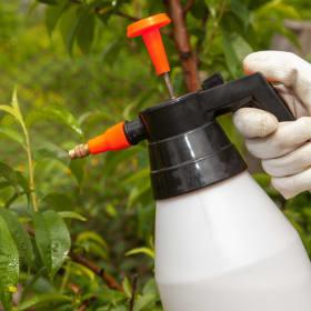 Cosa sono i fitosanitari PFPO?
