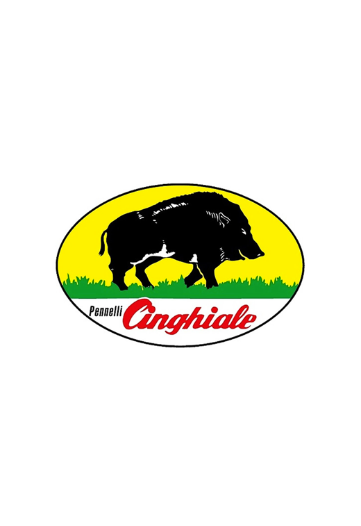 Logo cinghiale