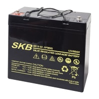 Batteria per accumulo energia solare 38.6455.05 12 V 55 Ah