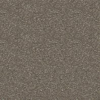 Smalto spray base solvente Fernovus 0.0075 L grigio