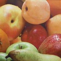 Tovaglia INSPIRE Frutta multicolore 140x220 cm