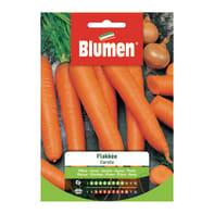 Seme per orto carota flakké