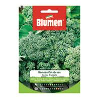 Seme per orto cavolo broccolo ramoso calabrese