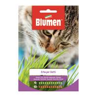 Seme per orto erba per gatti