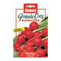 Seme per orto ravanello rosso tondo precoce