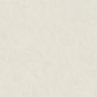 Carta da parati Spatolato marrone