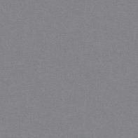 Carta da parati Plain grigio scuro