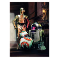 Carta da parati fotografica Star Wars three droid 184x254 cm