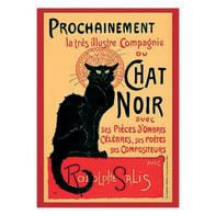 Poster Chat noir 61x91.5 cm