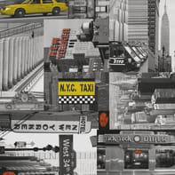 Pellicola Taxi grigio / argento 0.45x2 m