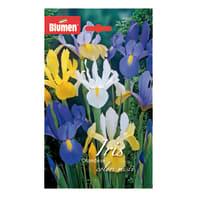 Bulbo Iris Olandese colori assortiti confezione da 60