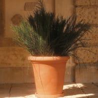 Vaso liscio Siena EURO3PLAST in plastica colore impruneta H 36 cm, Ø 38 cm
