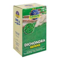 Seme per prato Dichondra repens 0.5 kg