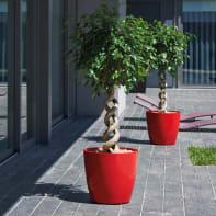 Vaso Sanremo ARTEVASI in polipropilene colore rosso H 23 cm, Ø 25 cm