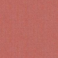Carta da parati Unito arancio / ramato