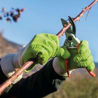 Guanto da giardinaggio in cotone L