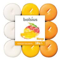 Tealight BOLSIUS essenza mango  Ø 19.5 cm H 3 cm, 18 pezzi