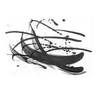 Quadro su tela India Ink 97x65 cm
