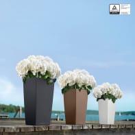 Vaso Cubico Color LECHUZA in plastica beige H 56 , L 30 X P 30 cm  Ø 20 cm