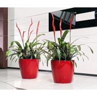 Vaso Classico Premium LECHUZA in plastica rosso H 40 Ø 43 cm