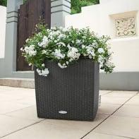 Vaso Cubico Cottage LECHUZA in plastica grigio H 50 , L 50 X P 50 cm  Ø 40 cm