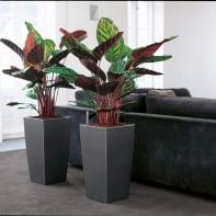 Vaso Cubico Color LECHUZA in plastica grigio H 75 , L 40 X P 40 cm