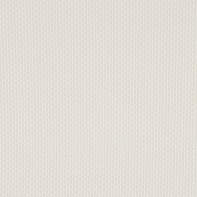 Tenda a rullo INSPIRE Screen Inspire lino 135x250 cm