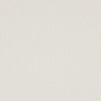 Tenda a rullo INSPIRE Screen Inspire lino 75x250 cm