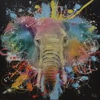 Quadro dipinto a mano Elefante 50x50 cm