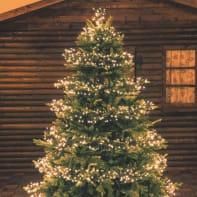 Catena luminosa 1104 lampadine bianco caldo Miniled Festone Cluster 1650 cm