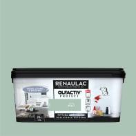 Pittura murale RENAULAC 2.5 L verde salvia