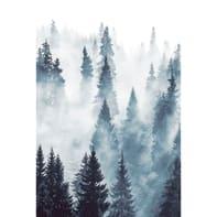 Foto murale ESTA Foresta 186x280 cm
