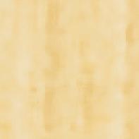 Vernice  V33 neutro 0.5 L
