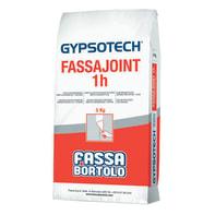 Stucco in polvere FASSA BORTOLO Fassajoint 1h 5 kg