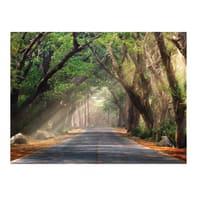 Sticker Forest road 240x0.1 cm