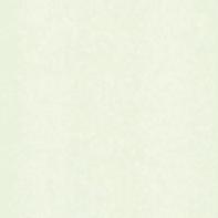 Carta da parati Couleurs&Matieres Brosse avorio