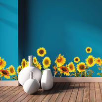 Stickers Roll decors Sunflowers