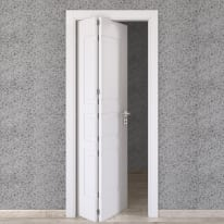 Porta da interno pieghevole asimmetrica Alioth bianco 80 x H 210 cm sx